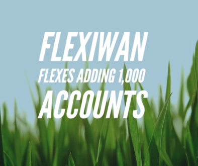 flexiWAN SD-WAN growth